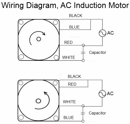 ac motor wiring red black white blue